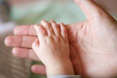 Mão da criança da terra arrendada da matriz Imagens de Stock