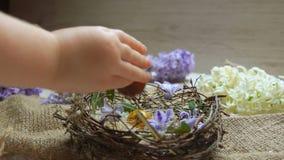 A mão da criança põe o ovo colorido dentro no ninho da Páscoa filme
