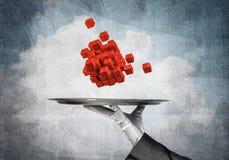 Mão da empregada de mesa que apresenta cubos na bandeja Fotografia de Stock Royalty Free