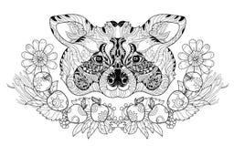 Mão da garatuja da cabeça do guaxinim de Zentangle tirada Ilustração Stock