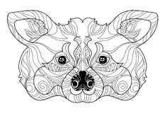 Mão da garatuja da cabeça do guaxinim de Zentangle tirada Ilustração do Vetor