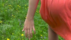 Mão da jovem mulher que corre através do campo selvagem verde do prado, tocando no close up das flores selvagens Tiro das imagens filme