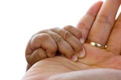Mão da matriz da preensão do bebê fotos de stock