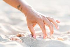 Mão da menina que pegara conchas do mar na praia branca da areia no por do sol Fotos de Stock Royalty Free