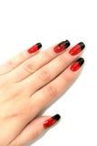 Mão da mulher Imagem de Stock