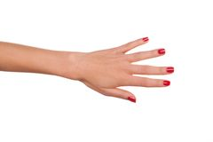 Mão da mulher Fotografia de Stock