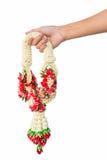 A mão da mulher asiática que guarda a festão do jasmim Imagem de Stock