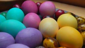 A mão da mulher colocou o ovo de codorniz colorido vermelho e verde filme