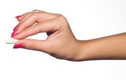 Mão da mulher com comprimido Imagem de Stock Royalty Free