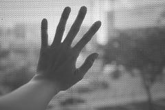 Mão da mulher na janela preto e branco imagens de stock