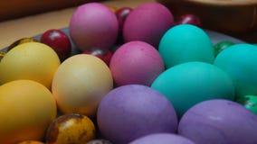 A mão da mulher põe o ovo de codorniz colorido vermelho e verde filme