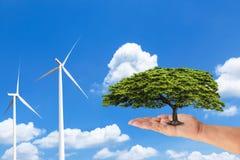 Mão da mulher que guarda a árvore verde com as turbinas eólicas que geram a eletricidade no céu azul Imagens de Stock Royalty Free