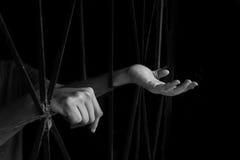 Mão da mulher que guarda a gaiola, abuso, conceito de tráfico humano fotos de stock royalty free