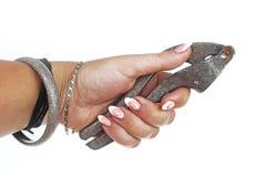 Mão da mulher que guarda o presser do alho no fundo branco isolado do entalhe Foto do estúdio com a iluminação do estúdio fácil d imagens de stock