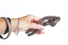 Mão da mulher que guarda o presser retro do alho no fundo branco isolado Foto do estúdio com a iluminação do estúdio fácil de usa imagem de stock