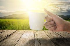 Mão da mulher que guarda um copo de café branco com prado verde e a montanha na manhã com o raio de sol no terraço de madeira vel Fotos de Stock Royalty Free