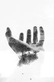 Mão da natureza Imagens de Stock