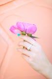 Mão da peônia Fotografia de Stock Royalty Free