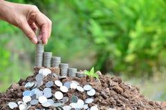 A mão da pessoa pôs a moeda sobre moedas da pilha no fundo do solo e da natureza Imagem de Stock Royalty Free