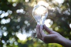 Mão da pessoa que guarda a ampola para a ideia ou o sucesso ou e solar Fotografia de Stock
