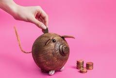 A mão das mulheres joga a moeda do metal em um mealheiro isolado no fundo cor-de-rosa Fotografia de Stock Royalty Free