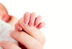 Mão de Babys foto de stock