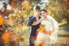 Mão de beijo do noivo da noiva imagens de stock