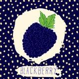 A mão de Blackberry tirada esboçou o fruto com a folha no fundo azul com teste padrão de pontos Rabiscar a amora-preta do vetor p Imagens de Stock