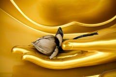 Mão de Buddha Fotografia de Stock Royalty Free