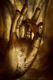 Mão de Buddha. Fotos de Stock