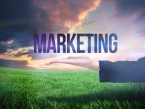 Mão de Businesswomans que apresenta o mercado da palavra imagens de stock royalty free