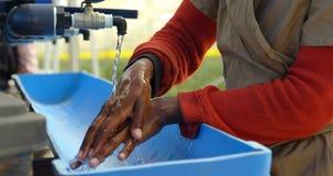 Mão de limpeza do trabalhador na exploração agrícola 4k do mirtilo vídeos de arquivo