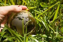 Mão de Person Very Gently Holds Globus Imagem de Stock