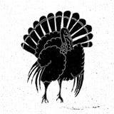 Mão de Turquia tirada ilustração stock