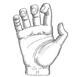 Mão de um homem Ilustração Royalty Free