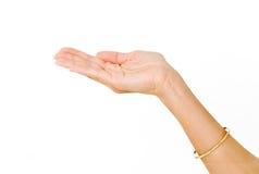 Mão de Womans fotografia de stock royalty free