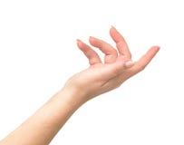 Mão de Womans Imagem de Stock