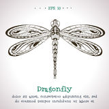 Mão decorativa libélula tirada do vetor do vintage Ilustração Royalty Free
