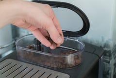 A mão derrama feijões de café em uma máquina do café fotografia de stock royalty free