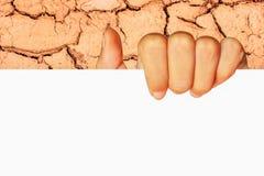Mão do adolescente que mantém o negócio vazio do papel de placa branca prese Fotografia de Stock Royalty Free