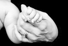 Mão do bebê da terra arrendada Fotografia de Stock