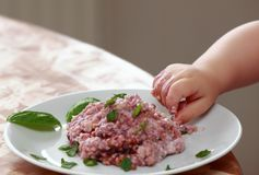 Mão do bebê que tenta comer o papa de aveia da farinha de aveia Foto de Stock Royalty Free