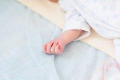 Mão do bebê recém-nascido fotos de stock royalty free