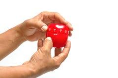 A mão do cozinheiro chefe usando o temporizador da maçã um temporizador da maçã Foto de Stock