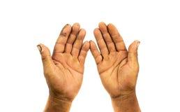 Mão do fazendeiro isolada no fundo branco fotografia de stock royalty free