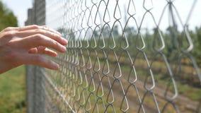 A mão do homem que guarda sobre a cerca do elo de corrente e agita-à ser liberada vídeos de arquivo