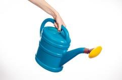 A mão do homem que guarda uma grande lata molhando plástica azul no branco Imagem de Stock
