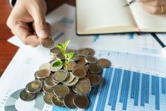 A mão do homem que põe a pilha das moedas para o crescimento ou o investimento explicando da planta do rendimento da finança do n fotografia de stock royalty free