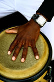 Mão do músico Imagens de Stock