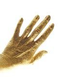 Mão do ouro Fotos de Stock Royalty Free